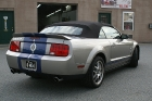 07 Ford Mustang 06.jpg