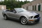 07 Ford Mustang 14.jpg