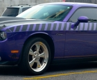 2010-dodge-challenger-matte-black-stripes-2