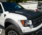 2010 Ford F-150 Hood and Roof